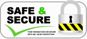 safesecurelogo